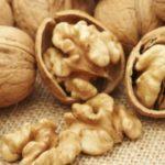 Foto: Prețuri mai mari la achiziționarea miezului de nucă. O veste bună pentru fermieri și micii producători