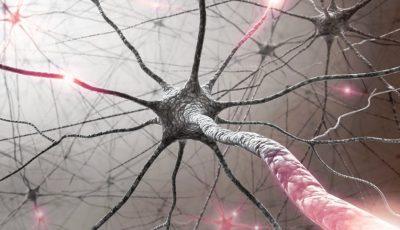 O cercetătoare de la Universitatea Cambridge a descoperit cum poate fi tratată scleroza multiplă