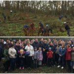 Foto: Sute de oameni au ieșit astăzi la muncă. Au plantat o pădure întreagă de stejari la Puhoi!