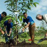 Foto: Elevii și studenții din Filipine trebuie să planteze 10 copaci pentru a-și putea lua diplomele
