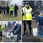 Foto: Inspectorii de Patrulare au plantat copaci în memoria victimelor accidentelor rutiere!