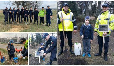 Inspectorii de Patrulare au plantat copaci în memoria victimelor accidentelor rutiere!