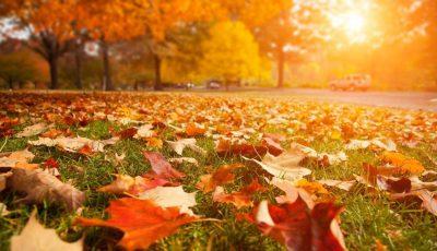 Octombrie 2019 – cea mai caldă lună octombrie înregistrată vreodată în lume, spun experții