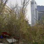 Foto: Mai mulți oameni ai străzii s-au adăpostit lângă un bloc din capitală. Locătarii trăiesc cu frica-n sân