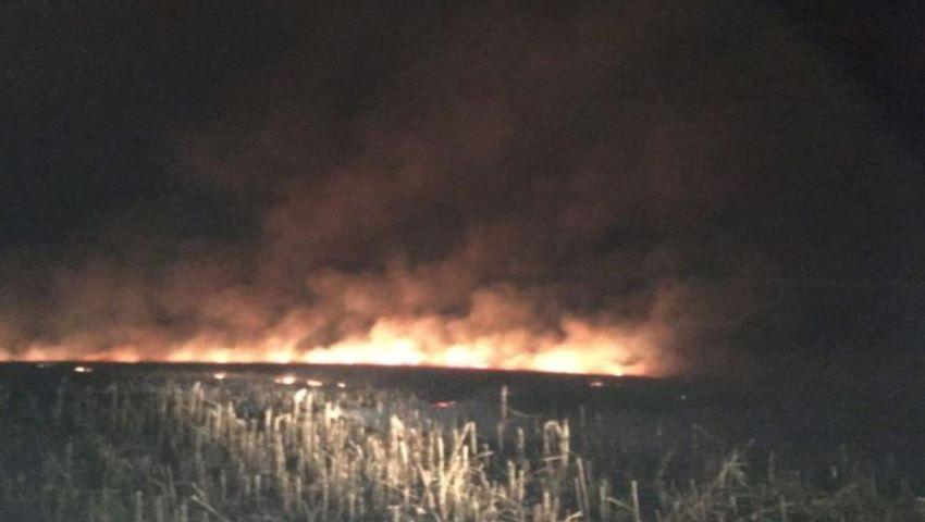 Foto: Un câmp de porumb de 100 de hectare a ars la Ungheni