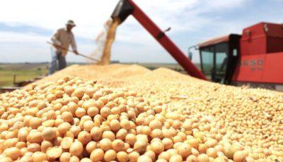 Peste o sută de producători din Belarus exportă cartofi în țara noastră