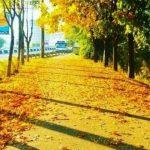 Foto: +25 de grade, în Moldova, pe 9 noiembrie! Atât de cald n-a mai fost în ultimii 100 de ani