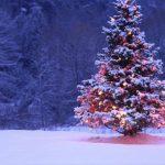 Foto: Meteorologii anunță că iarna este foarte aproape