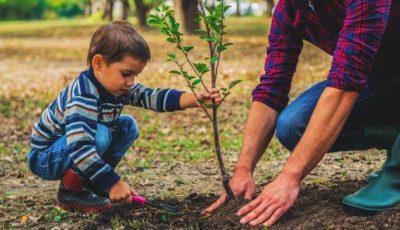 """,,Sădește un pom, salvează un nou-născut"""" – participă și tu la evenimentul caritabil organizat de Spitalul Clinic Municipal nr. 1"""
