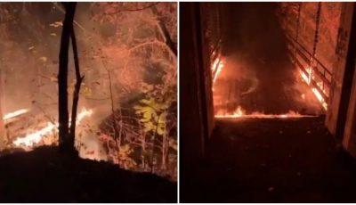 """Incendiu. În parcul Valea Trandafirilor, arde ,,Podul îndrăgostiților"""""""