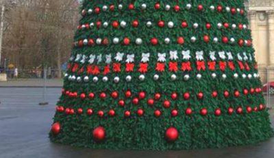 Prima imagine cu Pomul de Crăciun din PMAN