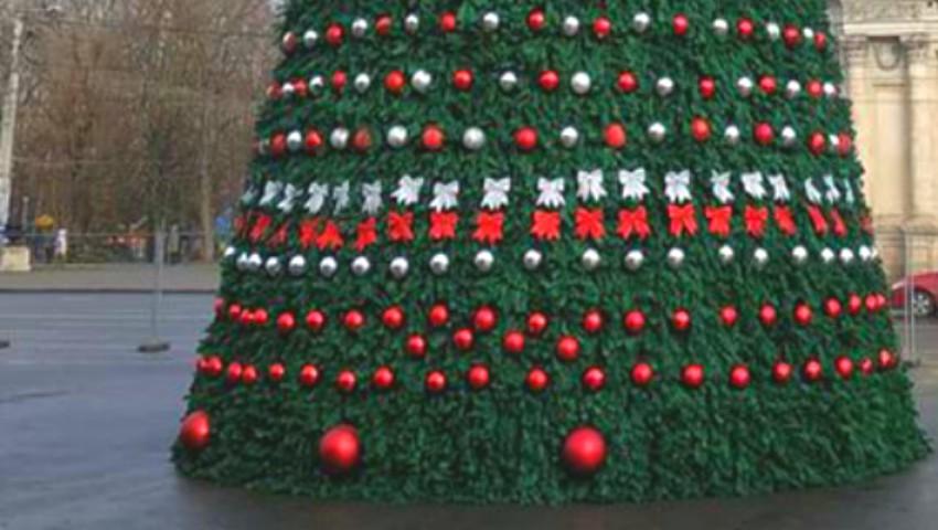 Foto: Prima imagine cu Pomul de Crăciun din PMAN