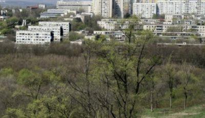 Un bărbat a fost bătut și jefuit de 7 mii de euro într-o pădure din Chișinău