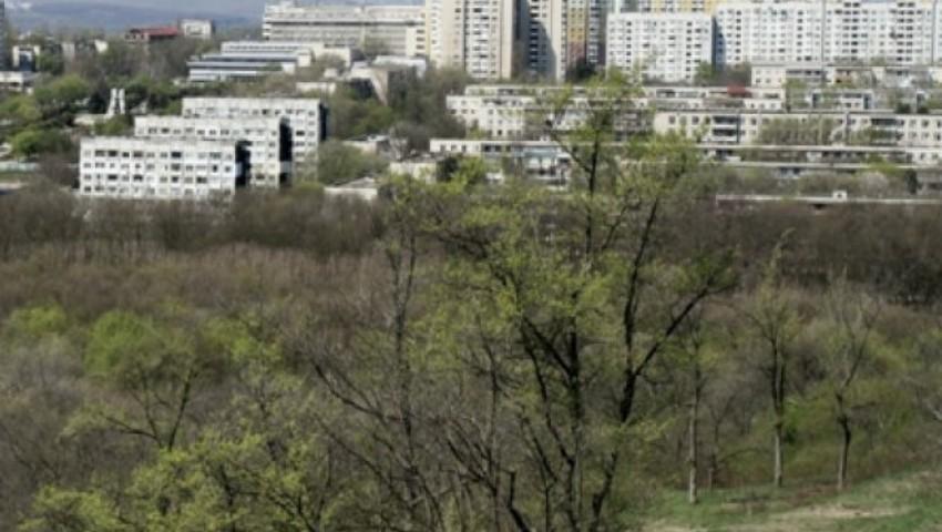 Foto: Un bărbat a fost bătut și jefuit de 7 mii de euro într-o pădure din Chișinău