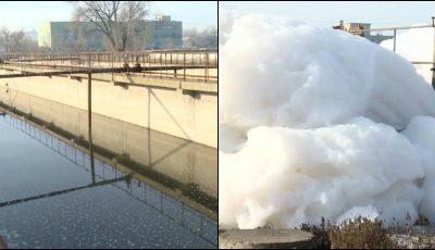 Mirosul urât a revenit în Capitală. Din cauza detergenților, spuma ajunge chiar și la trei metri, în râul Bâc