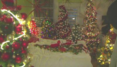 Un cuplu şi-a decorat casa cu 350 de pomi de Crăciun. Video!