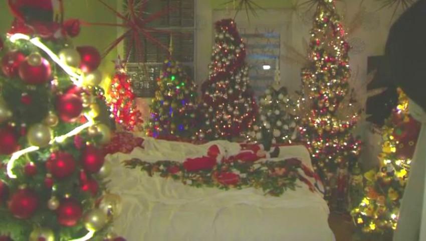 Foto: Un cuplu şi-a decorat casa cu 350 de pomi de Crăciun. Video!