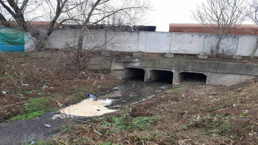 Foto: O substanță toxică cu miros specific, a fost aruncată în apele râului Bîc