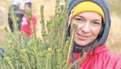 O artistă a plantat o pădure întreagă cu banii câştigaţi în Anglia, din muzică