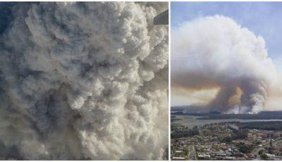 Un avion a trecut prin fumul incendiilor din Australia. Momente de panică, filmate de pasageri