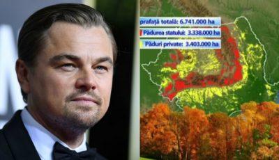 """Leonardo DiCaprio apără pădurile din România: ,,Este una dintre cele mai bătrâne păduri din Europa"""""""