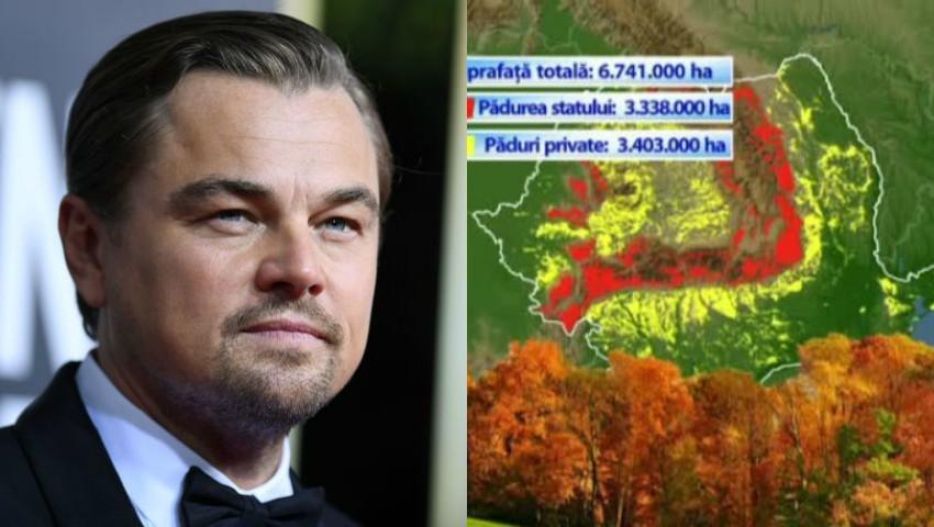 """Foto: Leonardo DiCaprio apără pădurile din România: ,,Este una dintre cele mai bătrâne păduri din Europa"""""""