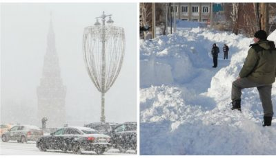 Foto! Ninge abundent în Rusia și în România