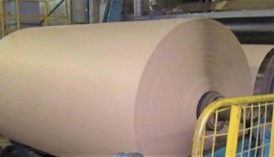 O fabrică din Ucraina produce hârtie din frunze căzute