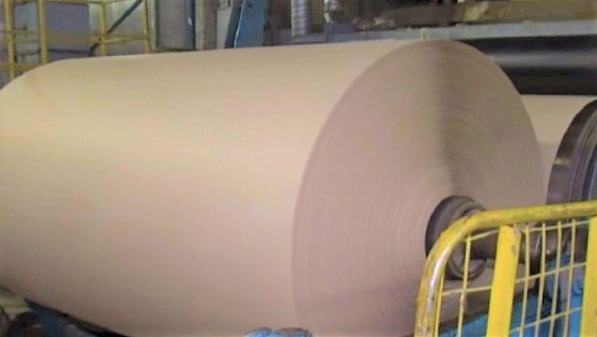 Foto: O fabrică din Ucraina produce hârtie din frunze căzute