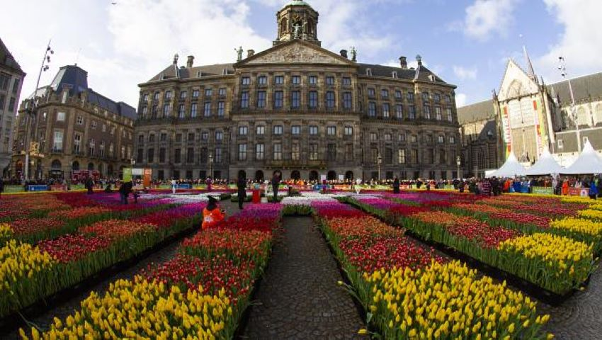 Foto: Video! Peisaj de poveste în Amsterdam, de ziua națională a Lalelei!