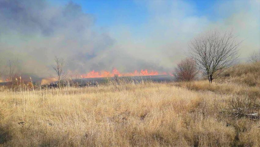 Foto: Incendiu la Căușeni. 10 hectare de teren au ars