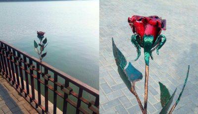"""Foto! Trandafirul Micului Prinț, din parcul ,,Valea Morilor"""", a fost restaurat"""