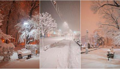 E iarnă în București! Poze spectaculoase