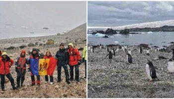 Un grup de moldoveni a ajuns în Antarctica. Imagini inedite, printre pinguini