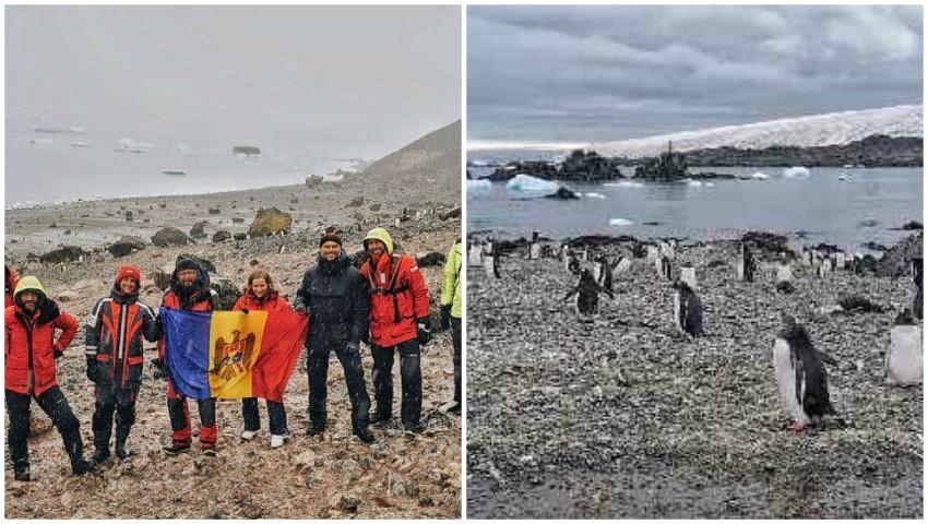 Foto: Un grup de moldoveni a ajuns în Antarctica. Imagini inedite, printre pinguini