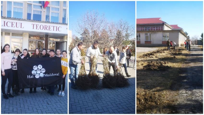 Foto: Elevii din Mereni și-au sădit propria livadă de alun pe teritoriul școlii, cu ajutorul echipei Hai Moldova