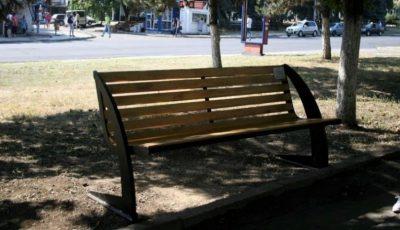 Persoanele care vor arunca coji de semințe în parcuri vor fi sancționate