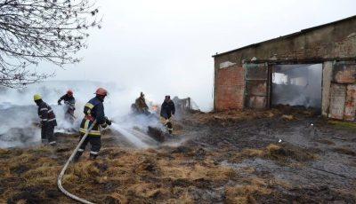 Incendiu la Leova. 35 de oi dintr-o gospodărie au pierit în flăcări