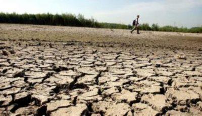 Cehia se confruntă cu cea mai gravă secetă din ultimii 500 de ani