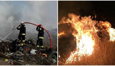 Peste 280 de hectare de vegetație au fost cuprinse de flăcări în toată țara