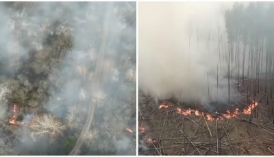 Incendiile fac prăpăd la Cernobîl. 25 de hectare au ars, flăcările sunt de neoprit
