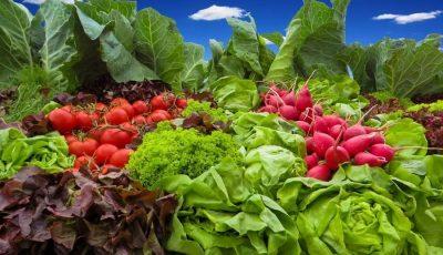 Chișinău: Lista străzilor și punctelor stabilite de autorități pentru comercializarea legumelor autohtone