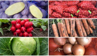 Fructe și legume la domiciliu. Livrare și prețuri