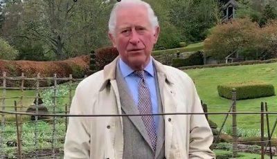 """Agricultura din Marea Britanie, aproape de dezastru. Prinţul Charles: ,,Avem nevoie de o armată ca să strângem fructele și legumele"""""""
