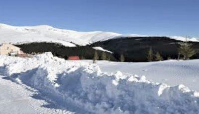A nins în România, în prag de vară
