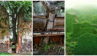 20 de locuri uimitoare în care natura a învins după plecarea omului