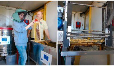 Apicultoarea din Moldova care și-a dezvoltat o afacere dulce și profitabilă, datorită unui grant obținut de la Uniunea Europeană