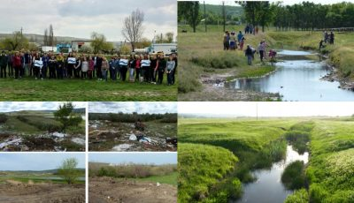 Bazinul râului Ciulucul Mic a fost reabilitat ecologic. Foto!