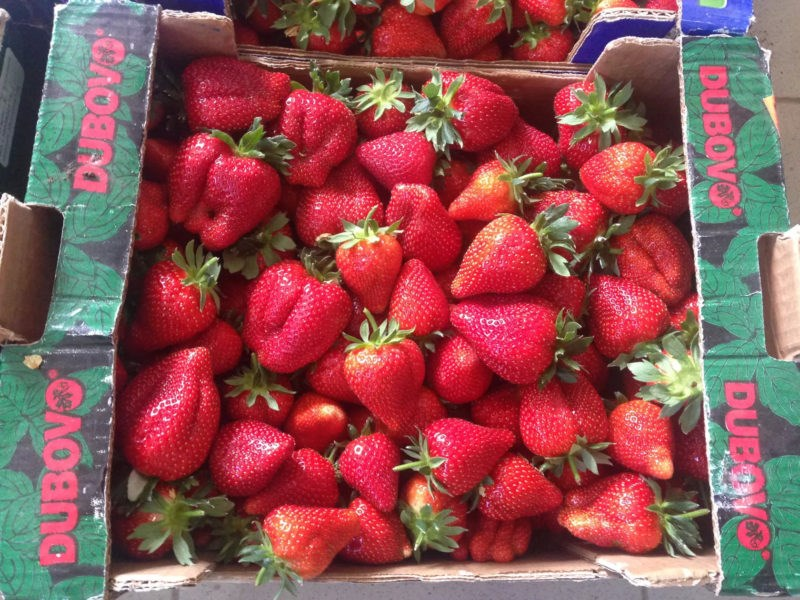 Tone de căpșuni ucrainene, importate în Moldova. Producătorii autohtoni sunt afectați