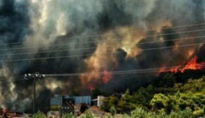 Incendii devastatoare în Grecia. Oameni evacuați din calea stihiei